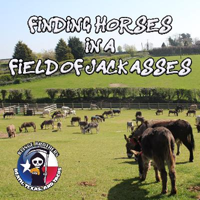 S1EP3:  Finding Horses in a Field of Jack Asses
