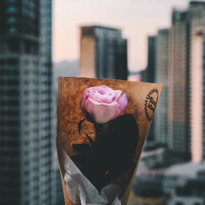 839 - Amor: Eventos românticos