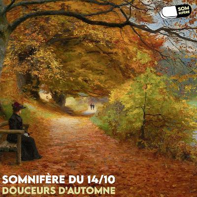 - Somnifère du 24/10 - Douceurs d'automne