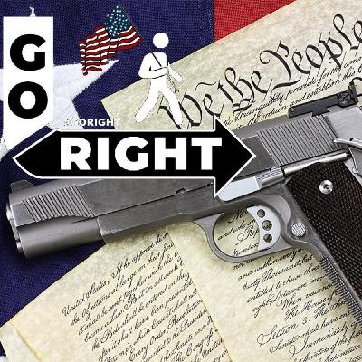 Lets Face It Gun Control Will Lead To The End of America