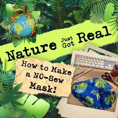 Ep #9 - How to Make a No-Sew Face Mask