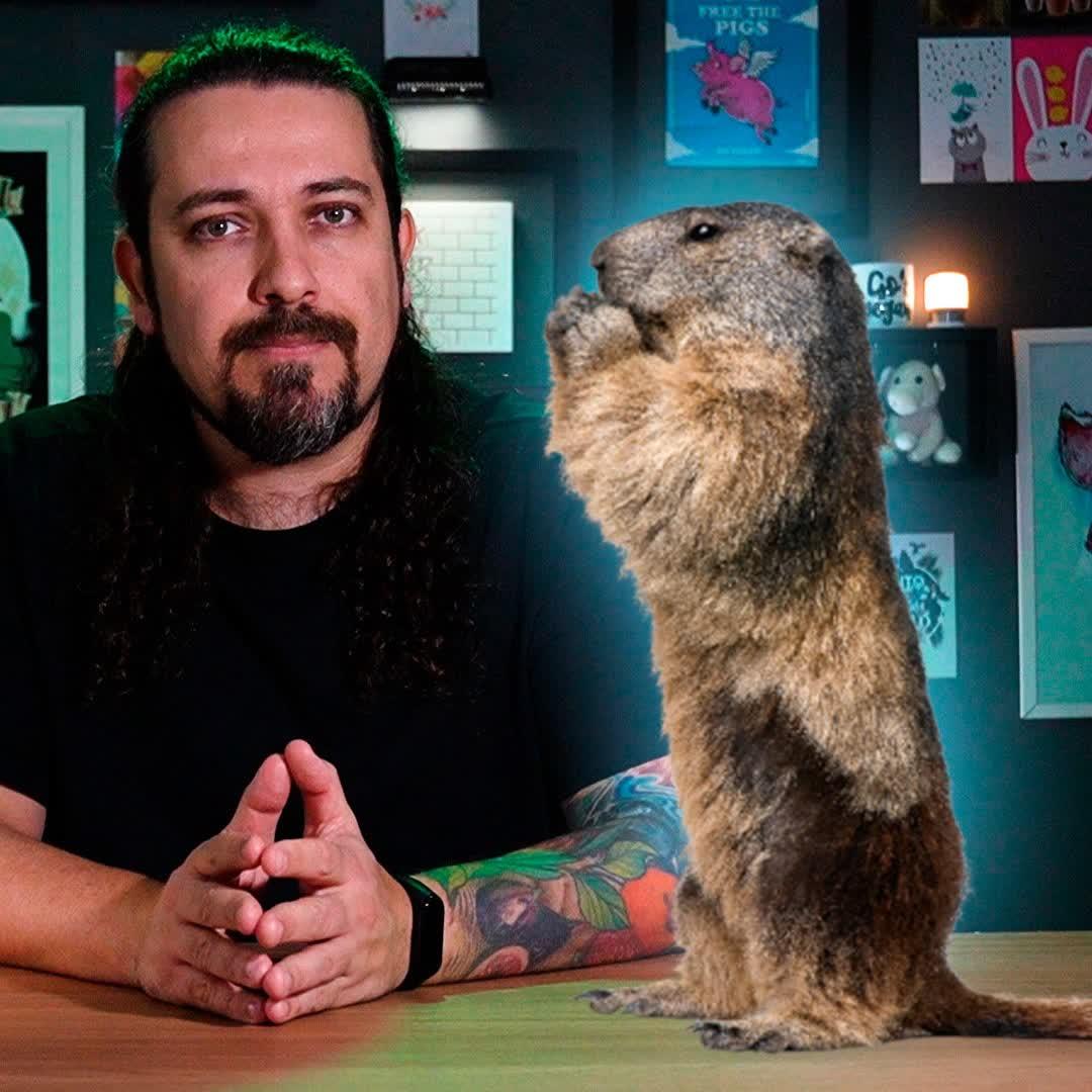 Irmãos pegam peste bubônica comendo carne de marmota e colocam Ásia em alerta