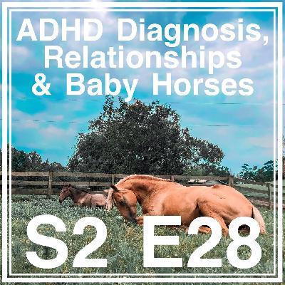 28 || ADHD Diagnosis, Relationships, & Baby Horses