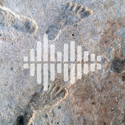 Earliest human footprints in North America, dating violins with tree rings, and the social life of DNA