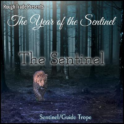 The Year of the Sentinel: The Sentinel