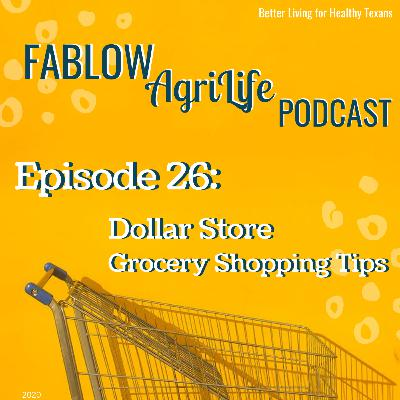 Dollar Store Grocery Shopping Tips - Episode 26