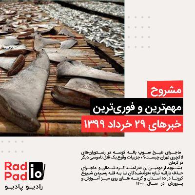 ماجرای طبخ سوپ باله کوسه در رستورانهای لاکچری تهران - 99.03.29
