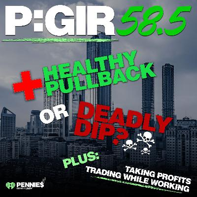 Episode 58.5: Healthy Pullback or Deadly Dip?