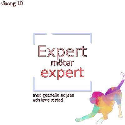 Expert möter expert: Gabriella Boijsen möter Tove Rastad