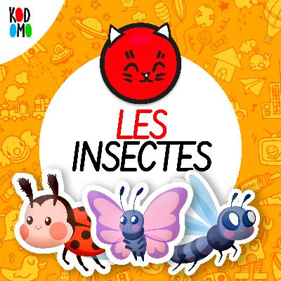 I comme Insectes