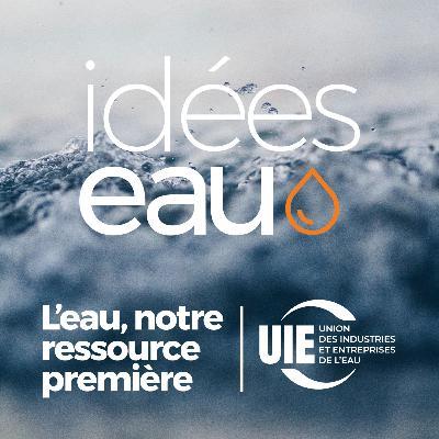 Idées Eau / Résilience et gestion des eaux pluviales en milieu urbain