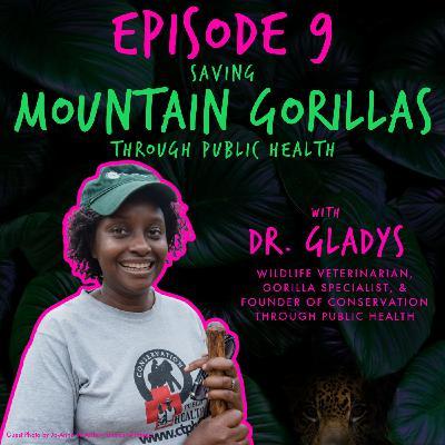 SAVING MOUNTAIN GORILLAS THROUGH PUBLIC HEALTH with DR. GLADYS