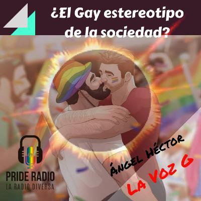 ¿El Gay estereotipo de la sociedad?