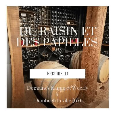Episode 11: Conversations entre 2 vignerons de Dambach la v