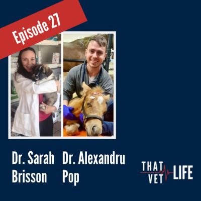 27 - The Truth Behind the Transition, with Dr. Alexandru Pop and Dr. Sarah Brisson