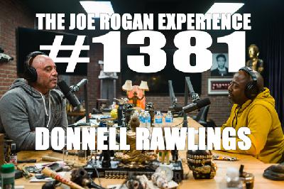 #1381 - Donnell Rawlings