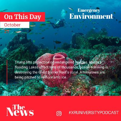 Emergency Environment #2: Flooding in Kenya, Coral Reef Damage, Trump and more...
