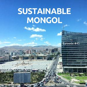 45: Хотын байгаль орчны асуудалд бүтээлчээр хандах нь, тогтвортой хөгжил-байгаль орчны зөвлөх Э.Золзаяа