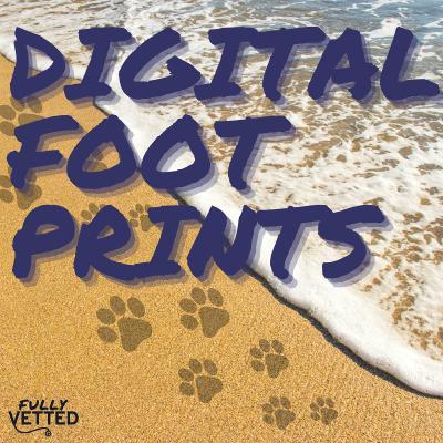 34. Digital Footprints: Improved Tracking of Animal Movements