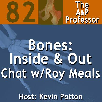 Bones: Inside and Out—A Chat with Dr. Roy Meals | TAPP 82