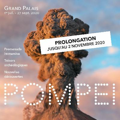 """Table Ronde """"Pompéi à l'écran : quand la fiction malmène l'histoire"""" (23/09/2020)"""
