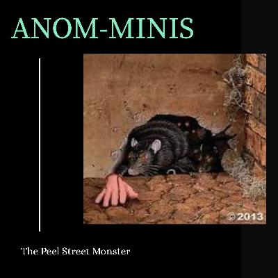 Anom-Mini: Peel Street Monster