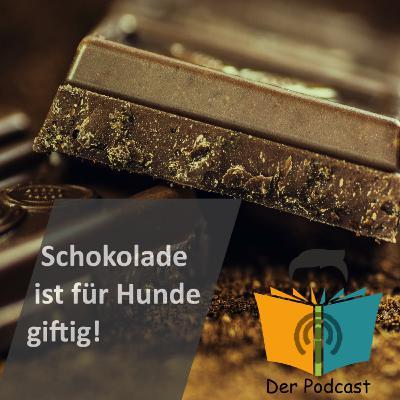 """Schokolade ist für Hunde giftig!"" - IstDasFakt?!"
