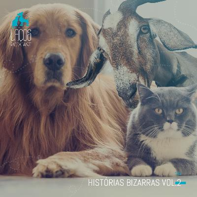 #42: Historias Bizarras - Vol2