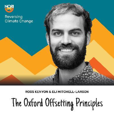 S2E62: The Oxford Offsetting Principles & carbon removal—w/ Eli Mitchell-Larson