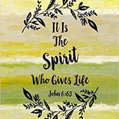 "Bible Class: ""It is the Spirit who gives life"" John 6:60—7:1"