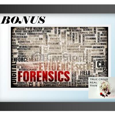 #7 - Forensic Fix (Bonus)