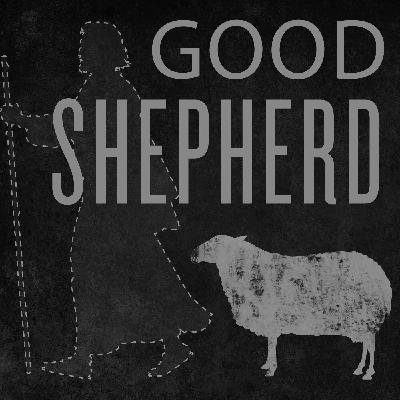 The Voice of the Shepherd (John 10:1-18)