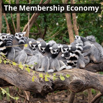 the membership economy -  על כלכלת מנויים וכלכלה משתפת