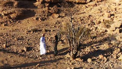 المشاء- ظـُـفار.. هبة وادي اللبان