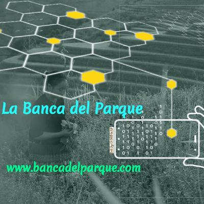 08.04.2021 - La Banca del Parque - Margarita Sofía Monsalve - Comida digital