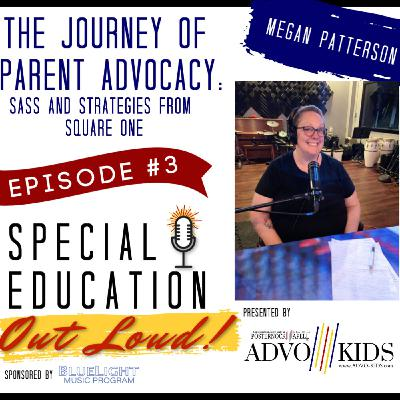 The Journey of Parent Advocacy: Sass and strategies from square one