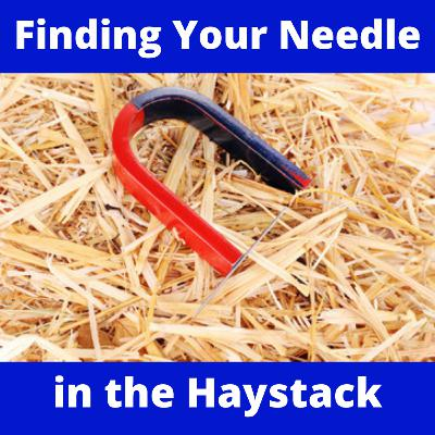 How to Find the Needle in Your Haystack