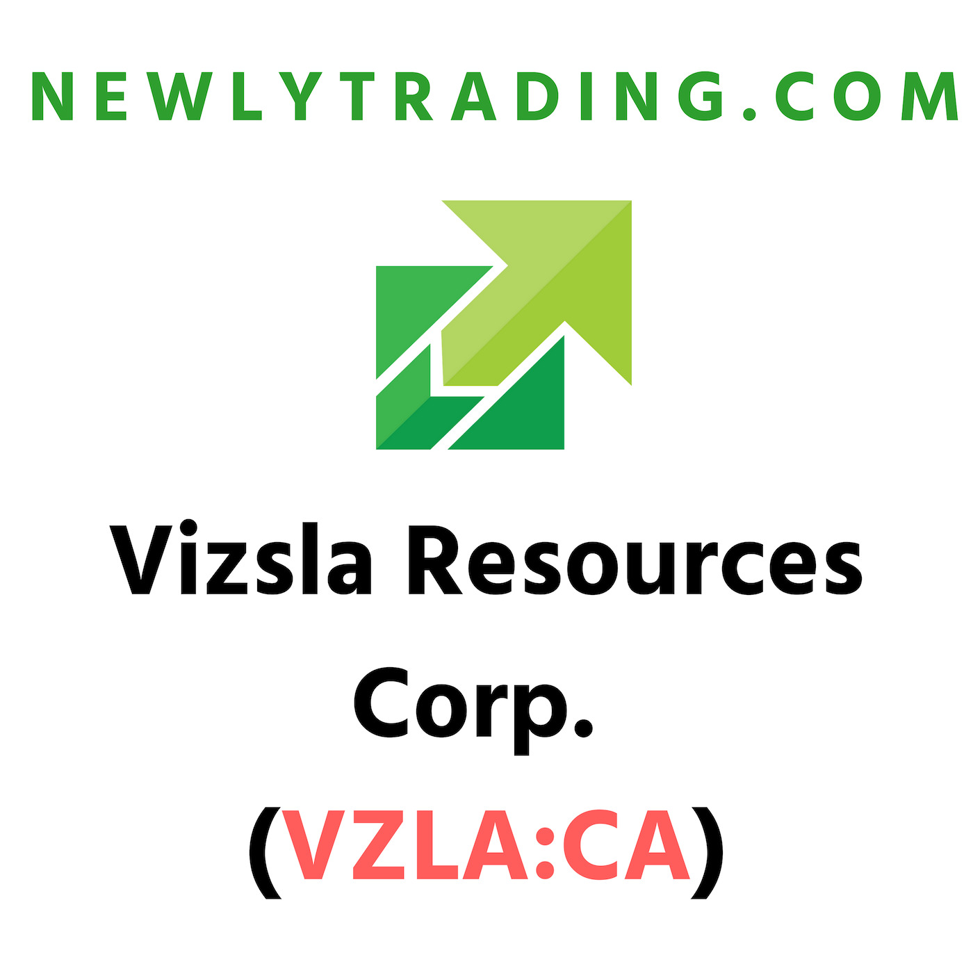 Vizsla Resources Corp. (VZLA:CA)