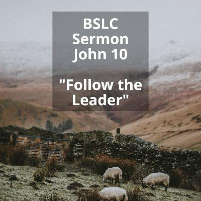 John 10 Follow the Leader- Good Shepherd Sunday Sermon