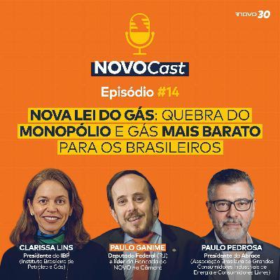 #14 Nova Lei do Gás: Quebra do monopólio e gás mais barato para os brasileiros