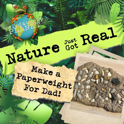 EP #13 - Make a Paperweight for Dad!