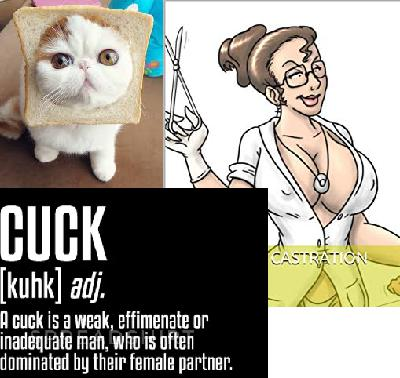 Episode 23:  (Cucks, Castration and Cat Breading)