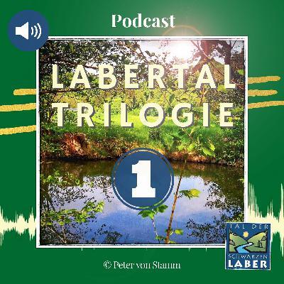 #20: Labertal Trilogie Teil 1 - Ein Reise Podcast von Peter von Stamm