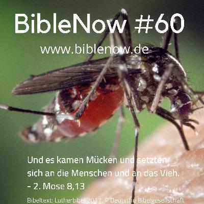 BibleNow #60: 2. Mose 8,12-9,21