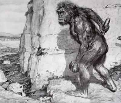 Caveman Confidential
