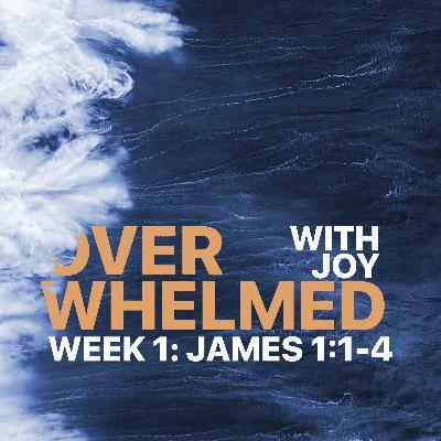 Overwhelmed | Week 1