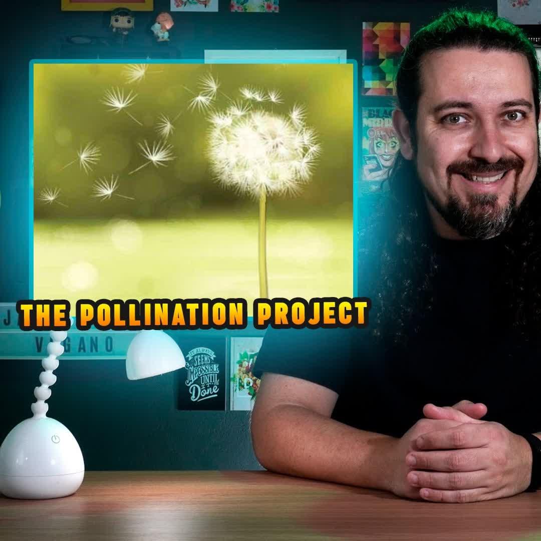 Receba R$ 5 mil para divulgar o veganismo | The Pollination Project