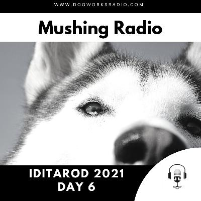 Iditarod 2021 Daily Coverage | Day 6