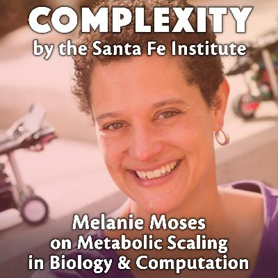 Melanie Moses on Metabolic Scaling in Biology & Computation