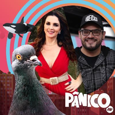 PÂNICO - AO VIVO - 12/11/20 - Luiza Ambiel e Matheus Ceará